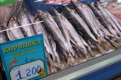 Αποξηραμένα παστά ψάρια τήξης στο μετρητή στην αγορά ψαριών Στοκ Εικόνα