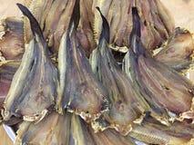 αποξηραμένα ψάρια Βιετνάμ Στοκ Φωτογραφία