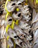 Αποξηραμένα ψάρια για την πώληση Στοκ φωτογραφίες με δικαίωμα ελεύθερης χρήσης