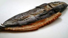αποξηραμένα ψάρια παστά Στοκ εικόνες με δικαίωμα ελεύθερης χρήσης