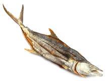 Αποξηραμένα ψάρια σολομών Στοκ Φωτογραφία