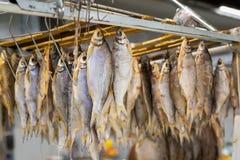 Αποξηραμένα ψάρια αποξηραμένα στους γάντζους Στοκ φωτογραφία με δικαίωμα ελεύθερης χρήσης