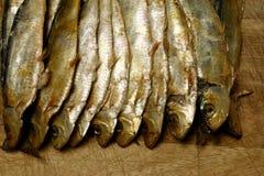 αποξηραμένα ψάρια Στοκ Φωτογραφία