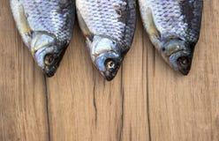 αποξηραμένα ψάρια Στοκ φωτογραφίες με δικαίωμα ελεύθερης χρήσης