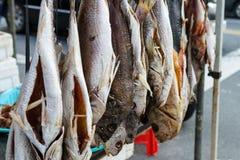 αποξηραμένα ψάρια Στοκ φωτογραφία με δικαίωμα ελεύθερης χρήσης