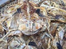αποξηραμένα ψάρια Στοκ Φωτογραφίες
