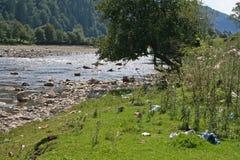 Απορρίματα στην όχθη ποταμού στα βουνά στοκ εικόνες