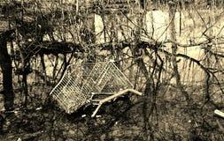 Απορρίμματα καροτσακιών αγορών Στοκ Φωτογραφίες