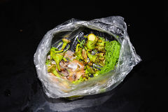 Απορρίμματα στην κουζίνα Στοκ εικόνα με δικαίωμα ελεύθερης χρήσης