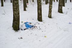 Απορρίμματα στο έδαφος στο πάρκο το χειμώνα Στοκ εικόνα με δικαίωμα ελεύθερης χρήσης
