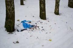 Απορρίμματα στο έδαφος στο πάρκο το χειμώνα Στοκ φωτογραφίες με δικαίωμα ελεύθερης χρήσης