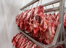 Απορριμμένο κεφάλι αγελάδων μετά από να γδυθεί όλου εδώδιμου τρώγοντας με Στοκ φωτογραφία με δικαίωμα ελεύθερης χρήσης