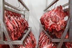 Απορριμμένο κεφάλι αγελάδων μετά από να γδυθεί όλου εδώδιμου τρώγοντας με Στοκ φωτογραφίες με δικαίωμα ελεύθερης χρήσης