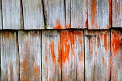 Αποσυντεθειμένη ξυλεία Στοκ φωτογραφίες με δικαίωμα ελεύθερης χρήσης