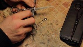 Αποσύνθεση και ακόνισμα πράσινων φώτων του ψαλιδιού κομμωτών απόθεμα βίντεο