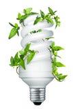 αποταμίευση ενεργειακού ελαφριά lightbulb βολβών Στοκ φωτογραφίες με δικαίωμα ελεύθερης χρήσης