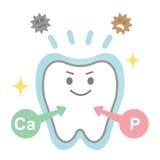 Αποτελέσματα του φθοριδίου στα δόντια Στοκ Εικόνες