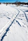 αποτυπωμένη ρόδα χιονιού Στοκ Εικόνες