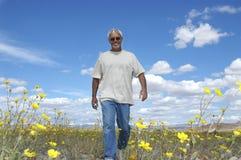 αποχώρηση wildflower Στοκ εικόνες με δικαίωμα ελεύθερης χρήσης