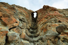 Απολίθωμα ενός δέντρου στους βράχους περιφραγμάτων Στοκ εικόνα με δικαίωμα ελεύθερης χρήσης