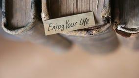 Απολαύστε το απόσπασμα ζωής σας απόθεμα βίντεο