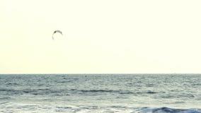 απολαύστε kiteboarder το σερφ θάλασσας απόθεμα βίντεο