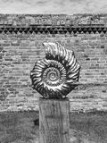 Απολιθωμένο γλυπτό Στοκ εικόνες με δικαίωμα ελεύθερης χρήσης