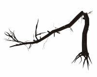Απολύτως σπασμένος κορμός δέντρων - τρισδιάστατος δώστε ελεύθερη απεικόνιση δικαιώματος