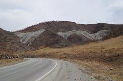 Απρίλιος σε Altai  Στοκ εικόνα με δικαίωμα ελεύθερης χρήσης