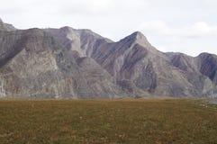 Απρίλιος σε Altai  Στοκ Εικόνα