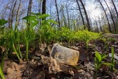 Απρόσεκτα ρίξτε μακριά το πλαστικό μπουκάλι στα απορρίματα φυλλώματος μια δασική πορεία στοκ εικόνες