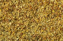 Απόβλητα και φλοιός καλαμποκιού καλαμπόκι Ινδός closeup Υπόβαθρο Η μακρο εικόνα μπορεί να χρησιμοποιηθεί ως υπόβαθρο Στοκ Εικόνες