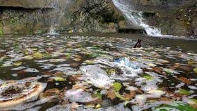 Απόβλητα ρύπανσης απορριμάτων στο βρώμικο νερό λιμνών απόθεμα βίντεο