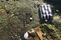 απόβλητα σπορείων Στοκ Φωτογραφία