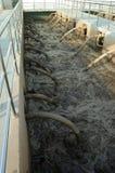 απόβλητο ύδωρ επεξεργασί& Στοκ Φωτογραφίες