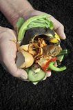 Απόβλητα κουζινών Στοκ φωτογραφία με δικαίωμα ελεύθερης χρήσης