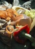 Απόβλητα κουζινών Στοκ Εικόνες