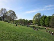 Απόγευμα πάρκων Στοκ Φωτογραφίες