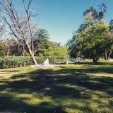 Απόγευμα στο πάρκο στοκ φωτογραφίες