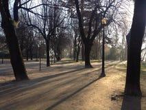 Απόγευμα στο πάρκο Στοκ φωτογραφία με δικαίωμα ελεύθερης χρήσης