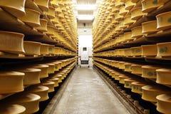 απόθεμα τυριών Στοκ Εικόνες