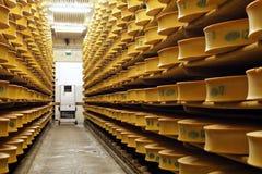 απόθεμα τυριών Στοκ εικόνα με δικαίωμα ελεύθερης χρήσης