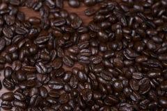 απόθεμα φωτογραφιών καφέ φ&a Στοκ φωτογραφίες με δικαίωμα ελεύθερης χρήσης