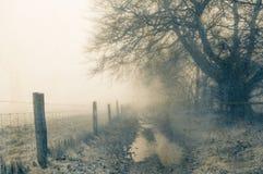Απόκοσμος ένας υγρός, πορεία στην άκρη της δασώδους περιοχής Μια θλιβερή, ομιχλώδη, χειμερινή ημέρα Έναν τρύγο, που θολώνεται με, στοκ εικόνες