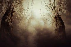 Απόκοσμο δέντρο στην υδρονέφωση νύχτας απεικόνιση αποθεμάτων