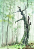 απόκοσμο δέντρο Στοκ Εικόνες