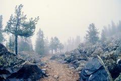 απόκρυφη κοιλάδα Στοκ Εικόνες