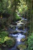 απόκρυφος ποταμός στοκ εικόνες