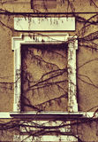 Απόκρυφος τοίχος με το περιτοιχισμένο παράθυρο και άμπελοι στο grunge ST Στοκ Εικόνα