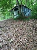 Απόκρυφο δάσος στοκ φωτογραφία με δικαίωμα ελεύθερης χρήσης